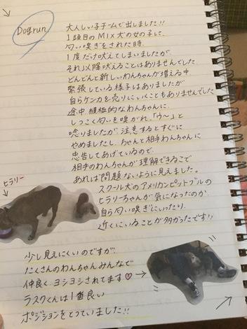 IMG_0188.JPG